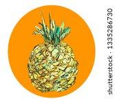 pineapple isolated fruit in... | Shutterstock .eps vector #1335286730
