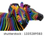 Two Colorful Zebra Painted In...