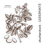 hand drawn potato illustration. ... | Shutterstock .eps vector #1335393473