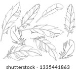 bird feather sketch  set | Shutterstock .eps vector #1335441863