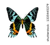 colorful hand drawn madagascan... | Shutterstock .eps vector #1335445379