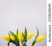 beautiful yellow tulip flowers... | Shutterstock . vector #1335640049