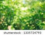 beautiful green bokeh light in... | Shutterstock . vector #1335724793