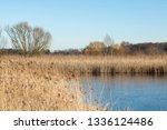 rieselfelder m nster in germany | Shutterstock . vector #1336124486