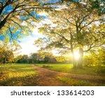 Autumn Park Natural Landscape