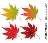 leaf autumn colorful... | Shutterstock . vector #1336179620