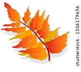 leaf autumn colorful... | Shutterstock . vector #1336179656