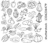 set of the hand drawn sketch... | Shutterstock .eps vector #1336236479