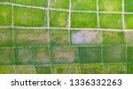 high angle photos  many green... | Shutterstock . vector #1336332263