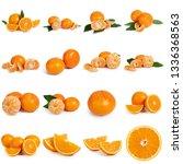 collage of fresh citrus... | Shutterstock . vector #1336368563