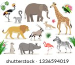 Set Of Cute African Animals...