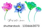 tropical watercolor flowers ... | Shutterstock . vector #1336663073
