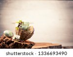 easter eggs with flower... | Shutterstock . vector #1336693490