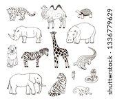 Animals Of Africa Illustrations ...