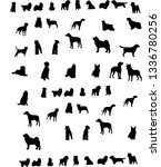 set of icons of dogs of... | Shutterstock .eps vector #1336780256