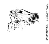 mouse. hand drawn vector animal ... | Shutterstock .eps vector #1336947623
