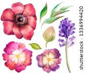 watercolor floral set. design... | Shutterstock . vector #1336994420