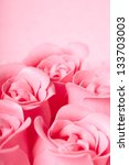 Stock photo pink roses 133703003