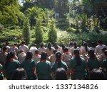 chaiyaphum  thailand  december  ... | Shutterstock . vector #1337134826