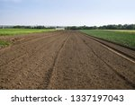 landscape with agricultural... | Shutterstock . vector #1337197043
