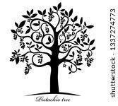 pistachio tree isolated on...   Shutterstock . vector #1337274773