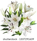 illustration with light lily... | Shutterstock .eps vector #1337291639