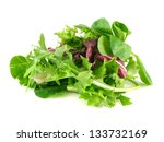 Salad Mix With Rucola  Frisee ...