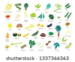 it is an illustration of...   Shutterstock . vector #1337366363
