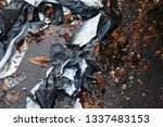 crumpled black and white... | Shutterstock . vector #1337483153
