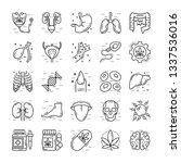 cells  organs  medical cannabis ... | Shutterstock .eps vector #1337536016