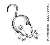 mouse. hand drawn vector animal ... | Shutterstock .eps vector #1337714450