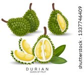 durian is very delicious fruit | Shutterstock .eps vector #1337746409