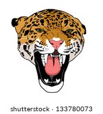 leopard wild cat isolated on... | Shutterstock .eps vector #133780073