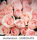 fresh pink roses bouquet flower ... | Shutterstock . vector #1338101453