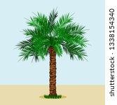 editable long trunk date palm... | Shutterstock .eps vector #1338154340