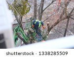 tree pruning and sawing by a... | Shutterstock . vector #1338285509