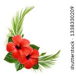 hibiscus flower and palm leaves ... | Shutterstock . vector #1338330209