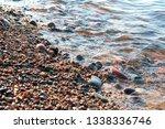 stones on the seashore  rocky...   Shutterstock . vector #1338336746