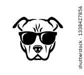 american pitbull terrier dog... | Shutterstock .eps vector #1338427856