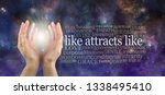 like attracts like so keep your ... | Shutterstock . vector #1338495410