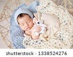 sweet newborn baby sleeps in a...   Shutterstock . vector #1338524276