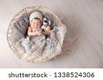 sweet newborn baby sleeps in a...   Shutterstock . vector #1338524306
