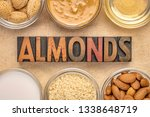 collection of almond super... | Shutterstock . vector #1338648719