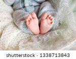 newborn baby feet on knitted...   Shutterstock . vector #1338713843