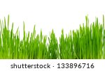 green grass isolated on white | Shutterstock . vector #133896716