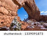 beautiful formation known as... | Shutterstock . vector #1339091873