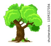 deciduous tree in four seasons  ... | Shutterstock .eps vector #1339227356