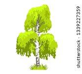 deciduous tree in four seasons  ... | Shutterstock .eps vector #1339227359