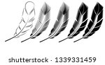 collection of feather... | Shutterstock . vector #1339331459