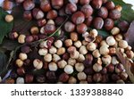 hazelnuts on leaves background   Shutterstock . vector #1339388840